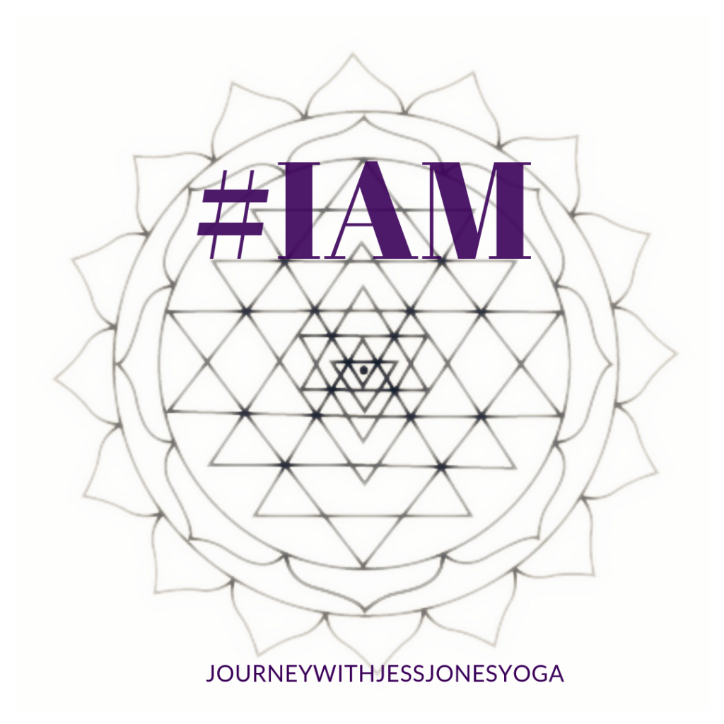 EMBRACE YOUR #IAM-NESS: Daily I AM Affirmations the Whole Month of November